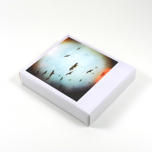 http://zoingimage.com/1318-thickbox_default/brighton-rock-1.jpg