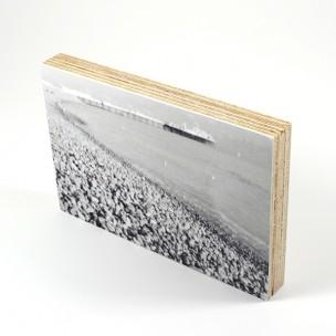 http://zoingimage.com/2005-thickbox_default/birch-plywood.jpg