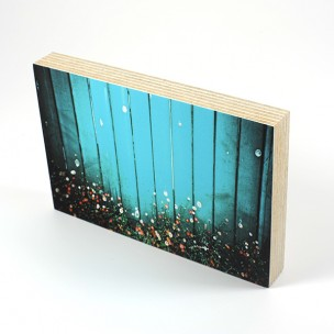 http://zoingimage.com/2010-thickbox_default/birch-plywood.jpg