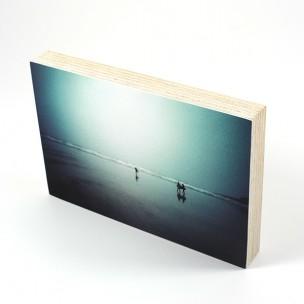 http://zoingimage.com/2031-thickbox_default/birch-plywood.jpg