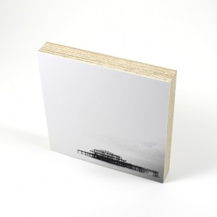 http://zoingimage.com/2052-thickbox_default/birch-plywood.jpg