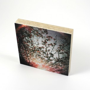 http://zoingimage.com/2059-thickbox_default/birch-plywood.jpg