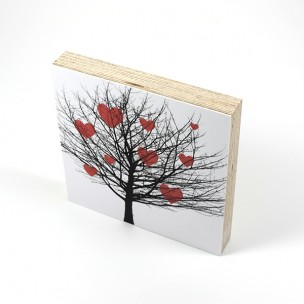 http://zoingimage.com/2078-thickbox_default/birch-plywood.jpg